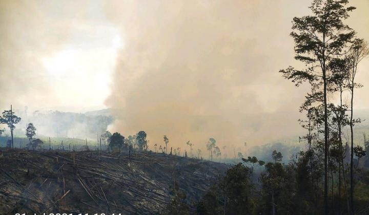 100 Hektar Lahan Hutan Lindung Bukit Suligi Terbakar, Petugas Kesulitan Padamkan Api