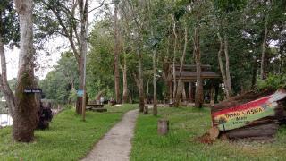 Menyaksikan Gajah Sumatera di Taman Wisata Buluh Cina