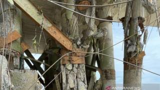 Kontraktor Ponton Tanggungjawab, Ganti Biaya Kerusakan Jembatan Padamaran II Rohil